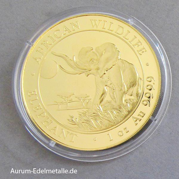 Somalia Elefant Gold 1 oz African Wildlife
